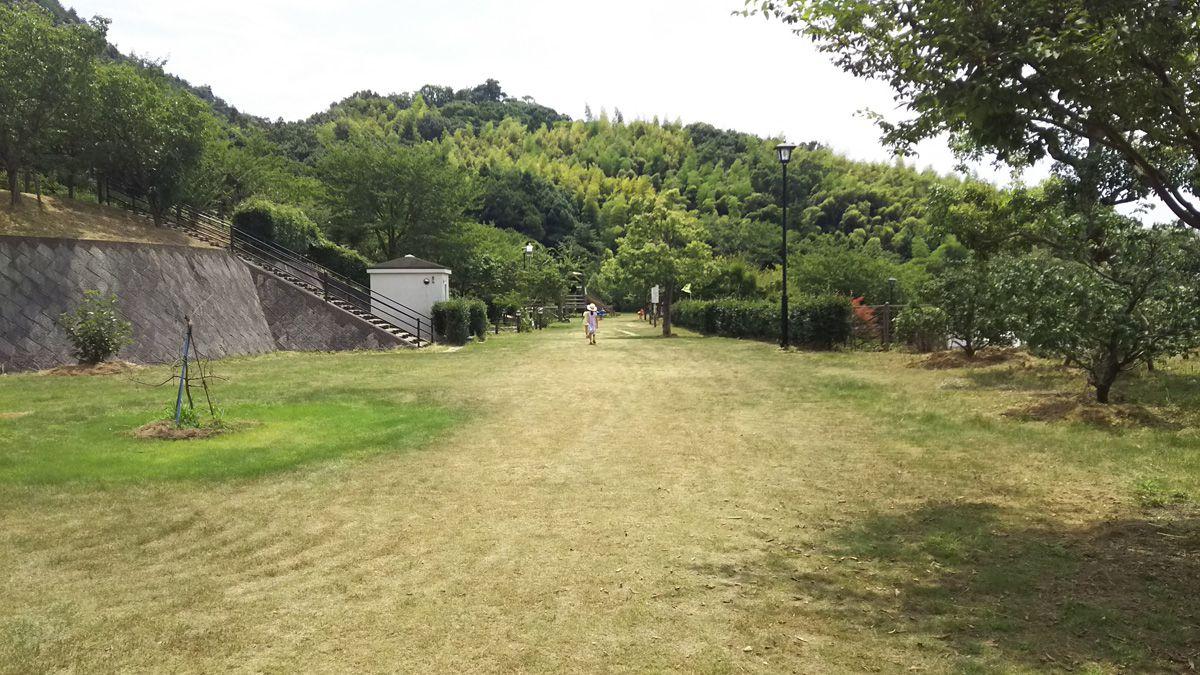 安神山(あんじんさん)わくわくパーク 広場